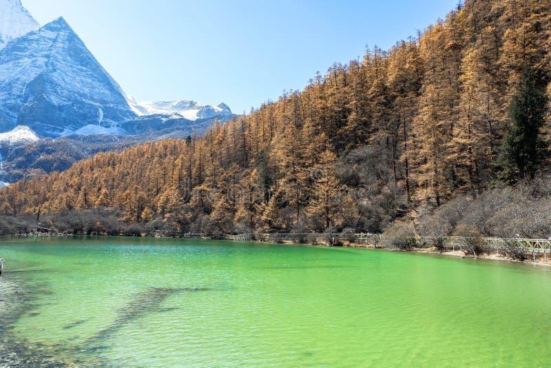 Pryda med pärlor sjön på den Yading naturreserven i Sichuan, Kina royaltyfria foton