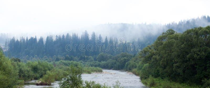 Prydlig atmosfär för skog, mist i luft Höstatmosfärbacke arkivfoton