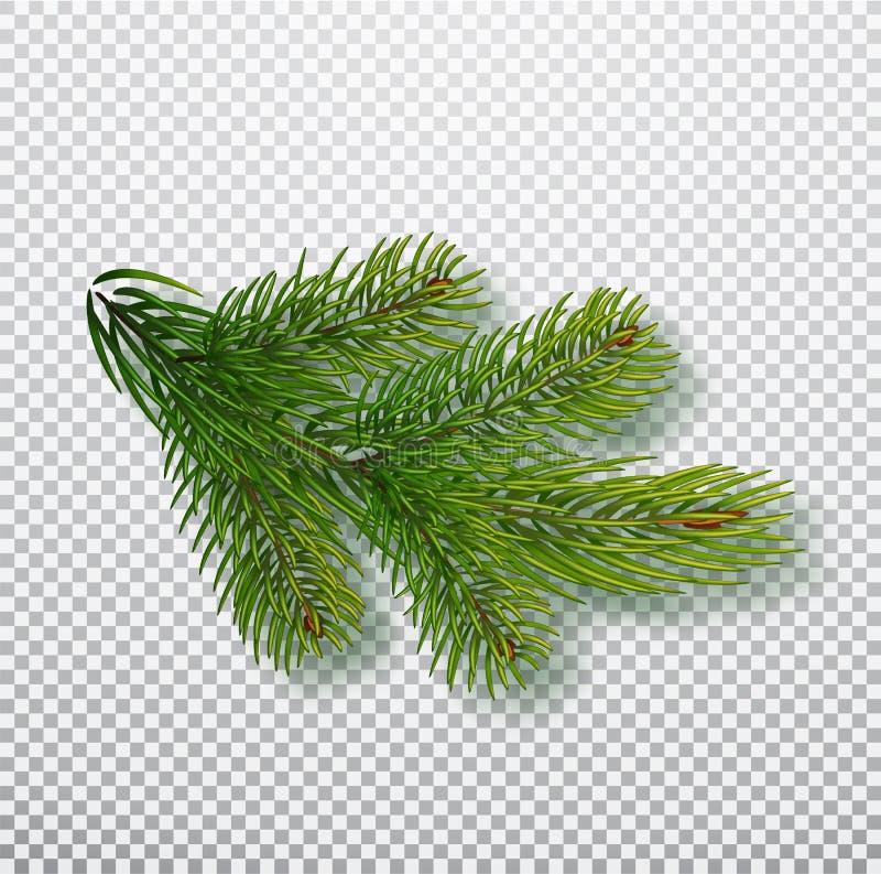 Prydlig filial som isoleras på bakgrund Julgranfilial Realistisk julvektorillustration Designbeståndsdel för vektor illustrationer