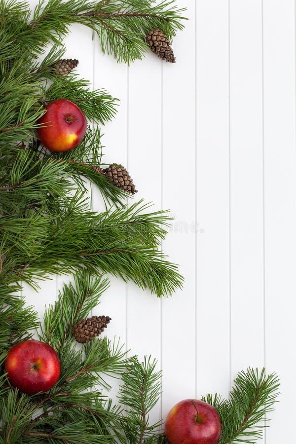 Prydlig ram för trädfilialer, vintergrön girland fotografering för bildbyråer