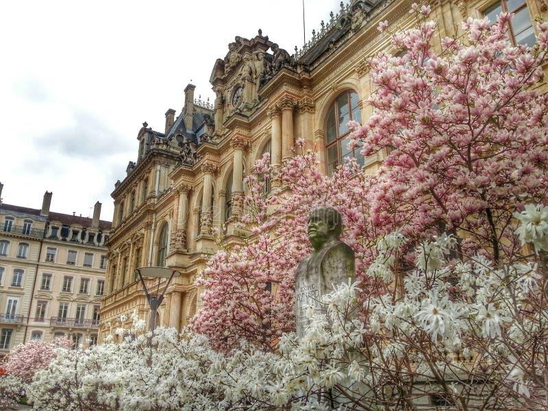 Przód cci budynek w wiosna sezonie, Lion stary miasteczko, Francja zdjęcie stock