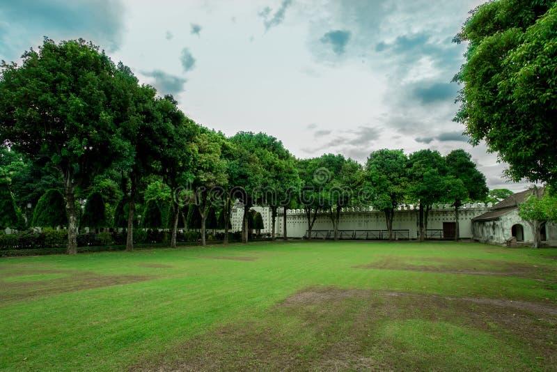 Przód lub podwórze, Formalny ogród, Ornamentacyjny ogród, niebo, gazon obraz royalty free