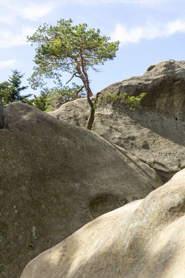 Przadki在克罗斯诺附近的岩石石头在波兰 免版税库存图片