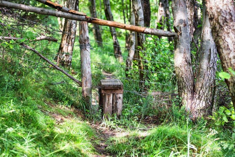 Przełaz w Rumunia wsi ogródach obrazy royalty free