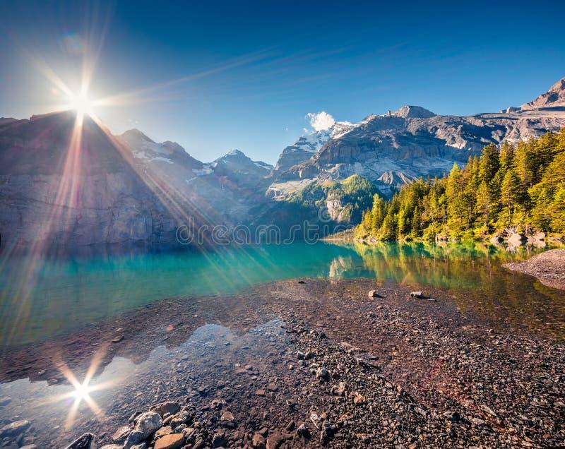 Prześwietny lata wschód słońca na unikalnym Oeschinensee jeziorze Prześwietna ranek scena w Szwajcarskich Alps z Bluemlisalp górą obrazy stock