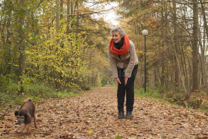 Przechodzić na emeryturę kobieta pyta jej psa przychodzić zdjęcia royalty free