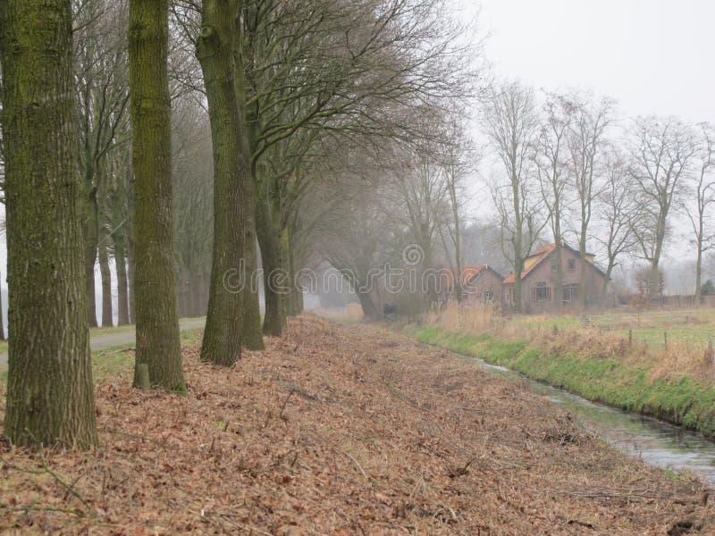 przeciw Amsterdam architektury tła barki kanału holenderskim czerepu holenderski domom obrazy royalty free