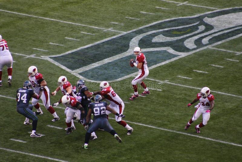 przeciw Arizona kardynałów seahawks Seattle wygranie zdjęcie royalty free