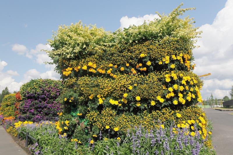 Przeciw niebieskiemu niebu pionowo flowerbed zdjęcia stock