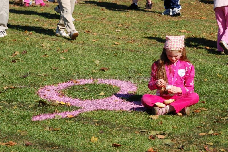 przeciw nowotwór piersi robi krokom zdjęcia stock