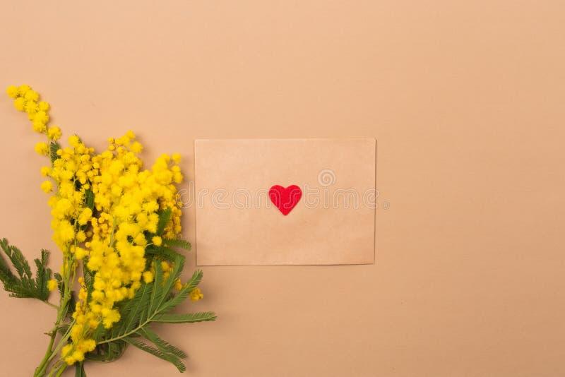 przeciw tła pojęcia kwiatu wiosna biały żółtym potomstwom pocałunek miłości człowieka koncepcja kobieta Wiosny tła skład z mimoza obraz stock
