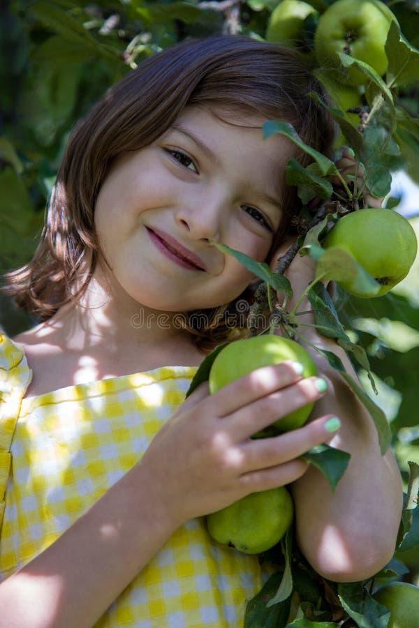 Przeciw tłu jabłoń jest dziewczyna, ona ręki dotyka jabłka zdjęcie stock