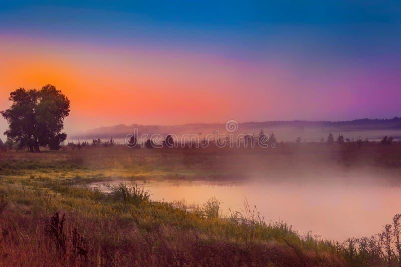 Przeciw tłu położenia słońce nad rzecznymi mgieł rozszerzaniami się, mgiełka nad jeziorem na lato wieczór obraz royalty free