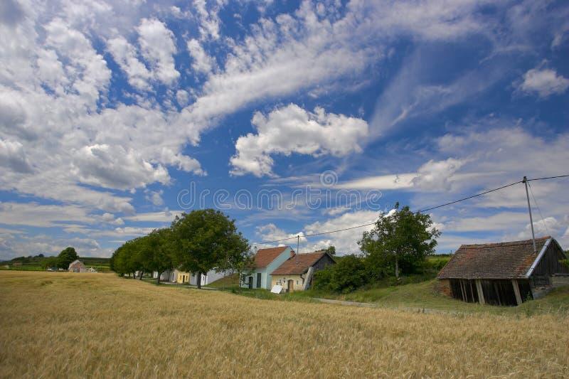 przeciwko błękitnemu pola niebo zdjęcia stock