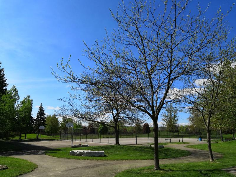 Przegapiać Niagara region fotografia stock