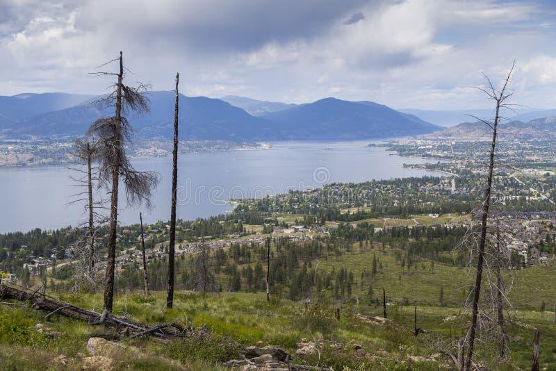 Przegapiać Sceniczną Okanagan dolinę obraz royalty free