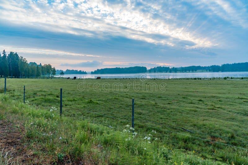 Przegapiający zieleń odpowiada jezioro i pięknego niebo fotografia stock