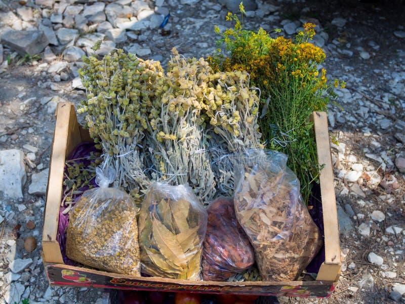 Przegląda krajobraz od antycznego kasztelu historyczny miasteczko Berat w Albania zdjęcia stock