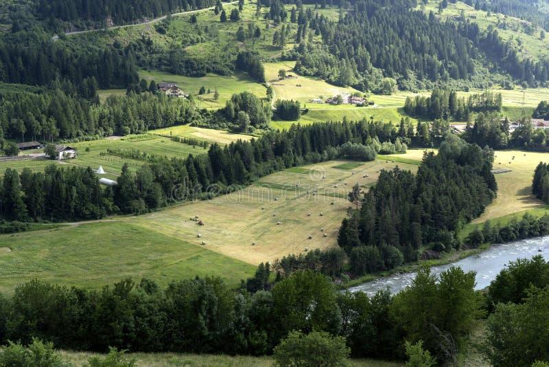 Przegl?du lato Cavalese w Trentino Alps Dolomiti, Trentino Altowy Adige, Włochy Strzelający brać od Cavalese, Val Di Fiemme zdjęcia royalty free