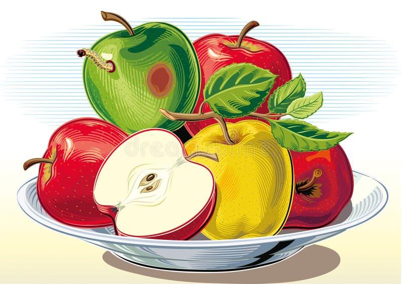 Przegniły jabłko w wiązce jabłka royalty ilustracja