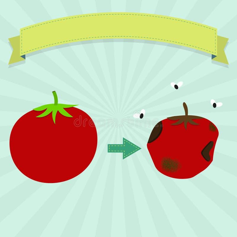 przegniły pomidor ilustracji