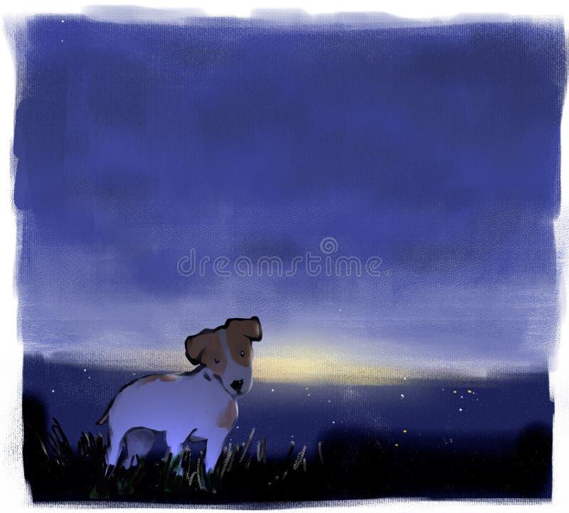 Przegrany pies zdjęcie royalty free