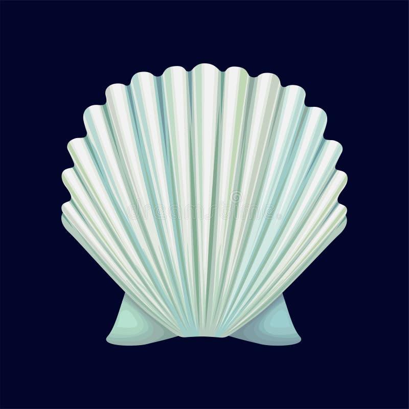 Przegrzebka seashell, pusta skorupa dennego mollusk wektorowa ilustracja na zmroku - błękitny tło ilustracja wektor