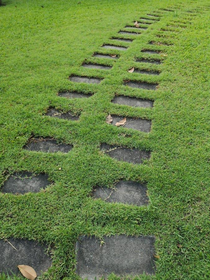 Przejście w parkowym cementu bloku umieszczającym na trawa wzoru bruku chodniczka droga przemian materialnym przejściu zdjęcia royalty free