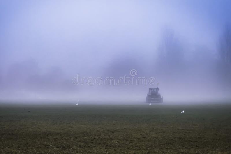 Przejażdżka na gazonu kosiarzie w mgle zdjęcia royalty free