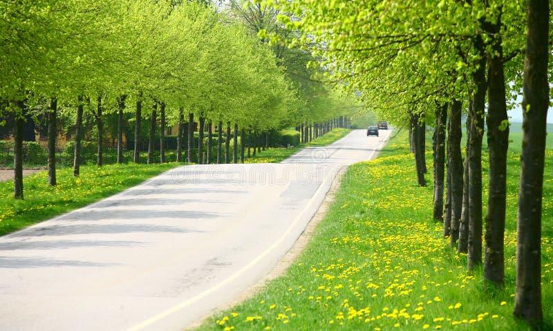 przejazd wiosna zdjęcia stock