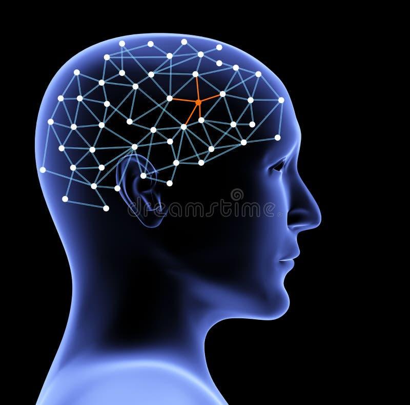 Przejrzysta 3d głowa mózg i osoba royalty ilustracja