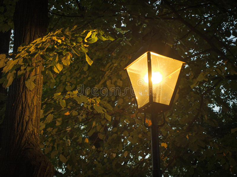 przejrzysta jabłczana czarny lampowa noc zdjęcie stock