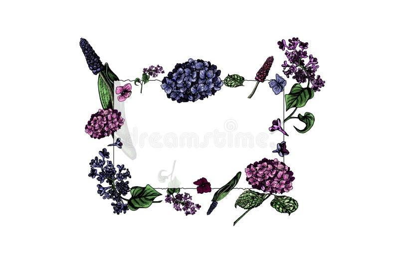 Przejrzysta szkło rama z kolorowymi kwiatami, ręka rysująca obraz royalty free