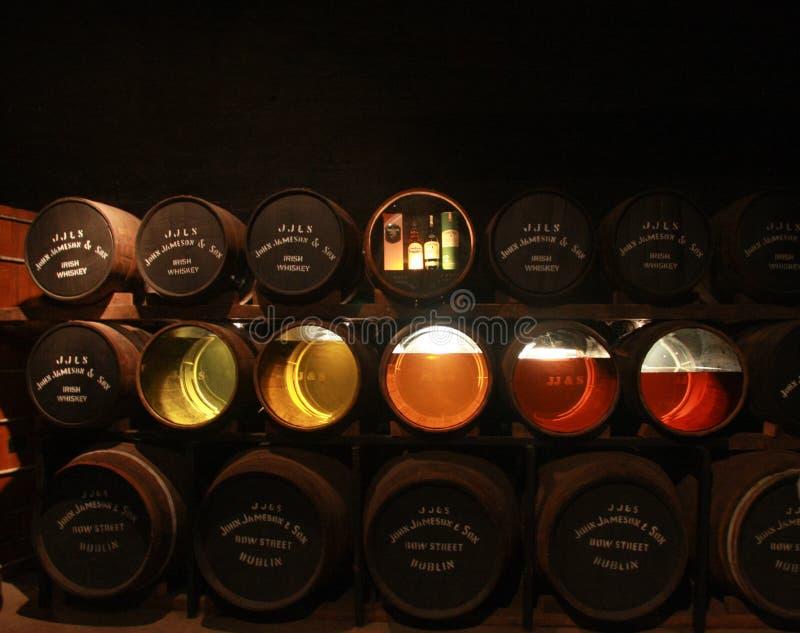 Przejrzysty dno beczkuje z próbkami w Starym Midleton destylarni muzeum Irlandzki whisky w korku zdjęcie stock