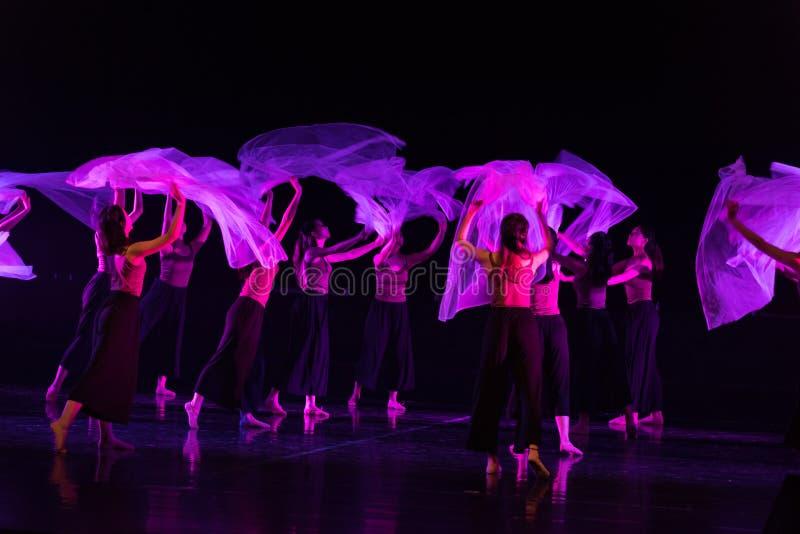 Przejrzysty szalika taniec 2--Tana dramata osioł dostaje wodnym obrazy stock