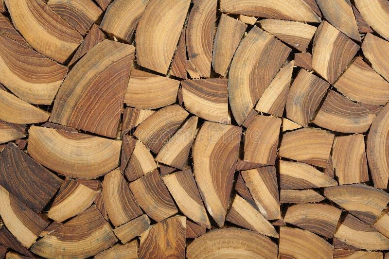 przekrój poprzeczny drewno obraz stock