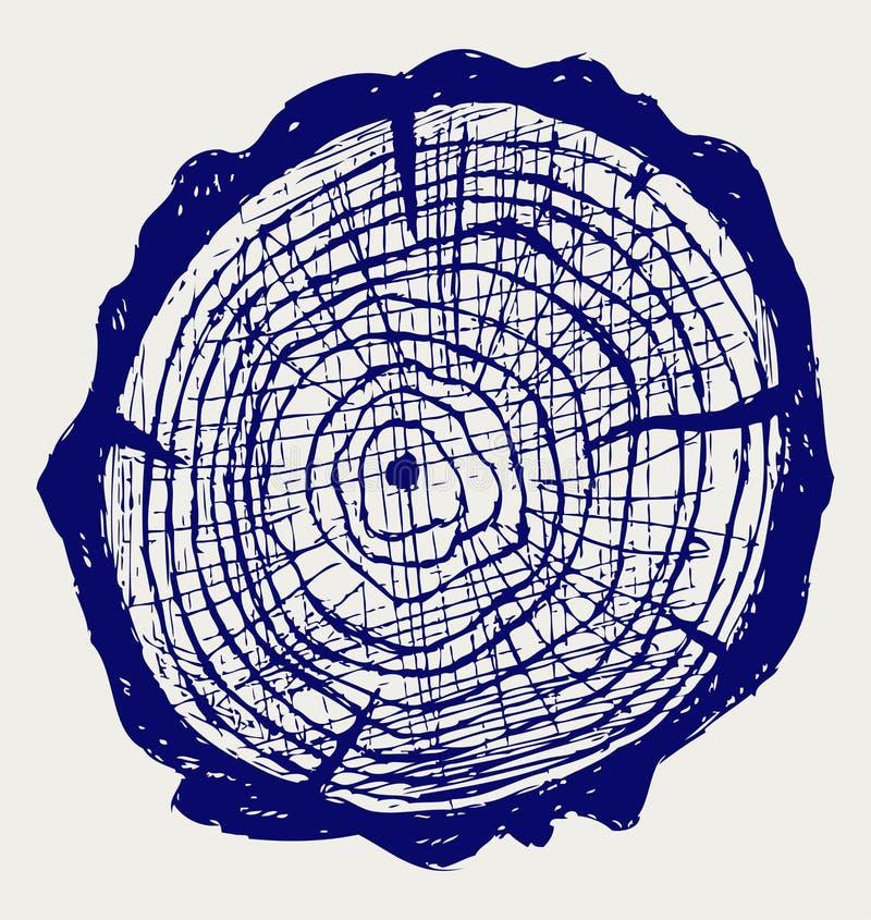 Przekrój poprzeczny drzewny fiszorek ilustracji