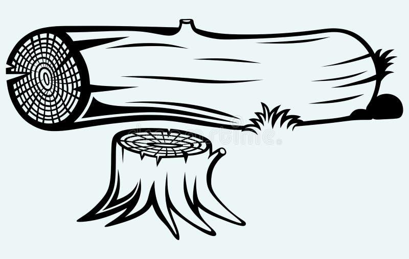Przekrój poprzeczny drzewny fiszorek ilustracja wektor
