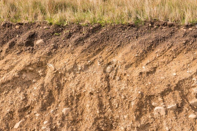 Przekrój poprzeczny ziemi warstwy z trawą na wierzchołku obrazy royalty free