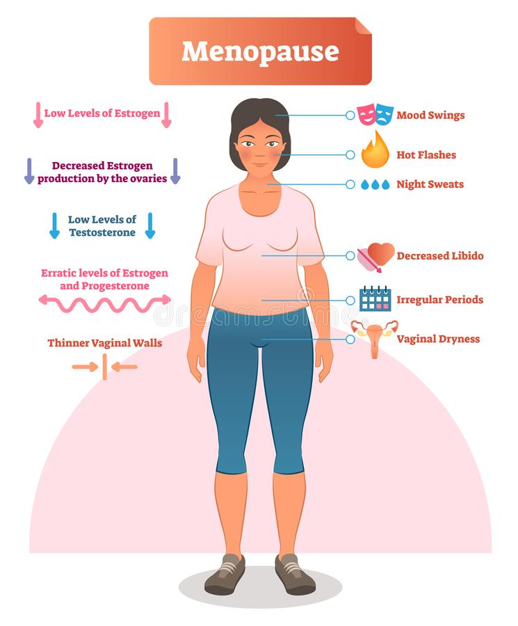 Przekwitanie przylepiająca etykietkę wektorowa ilustracja Medyczny plan z listą estrogenu, jajników, testosteronu i progesteronu  ilustracji
