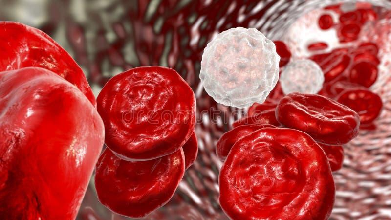 Przepływ krwi, czerwone komórki krwi i leukocytes, royalty ilustracja