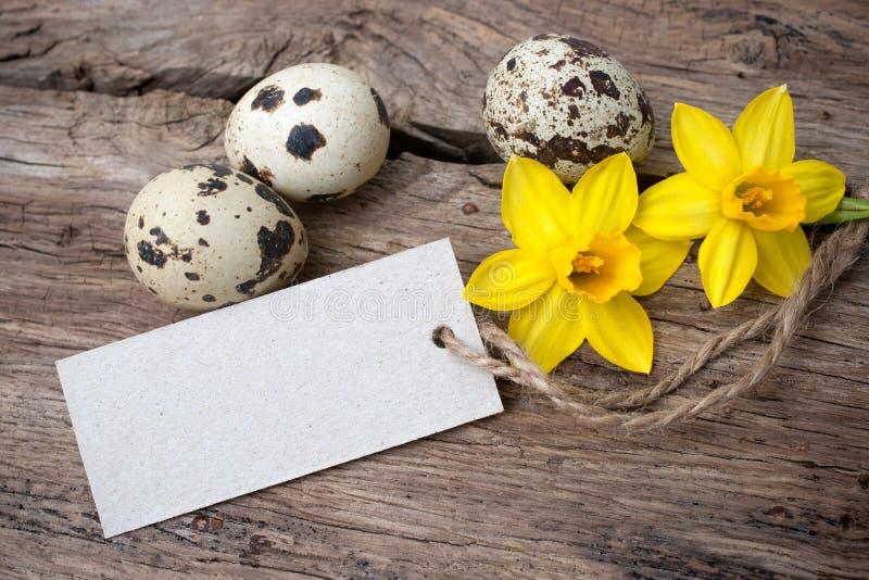 Przepiórek daffodils z etykietką i jajka fotografia royalty free