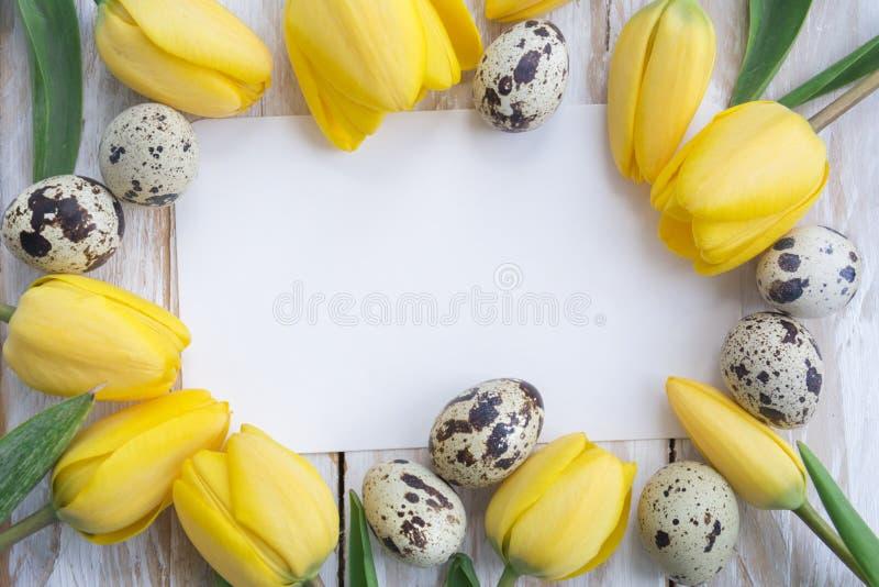 Przepiórek jajka, żółci tulipany i biel karta na drewnianym tle, zdjęcie royalty free