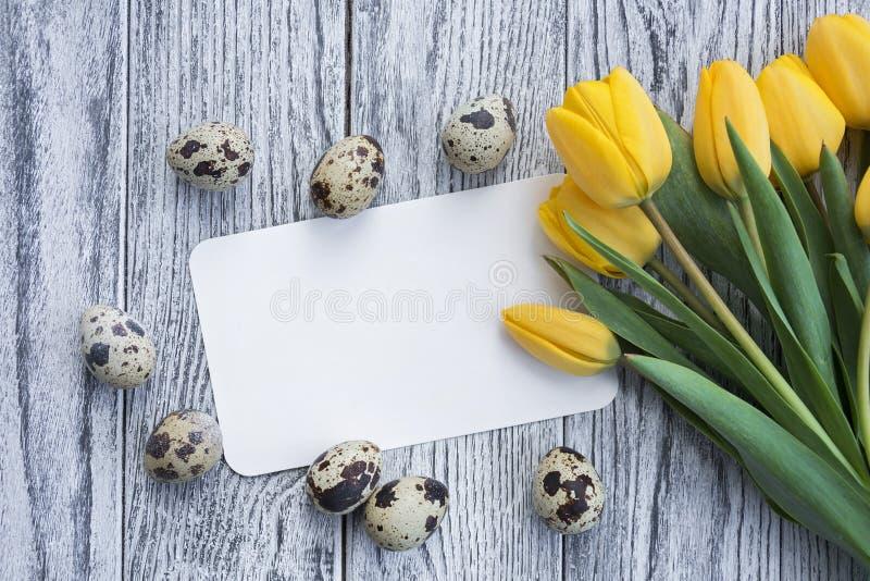 Przepiórek jajka, żółci tulipany i biel karta na drewnianym tle, zdjęcie stock