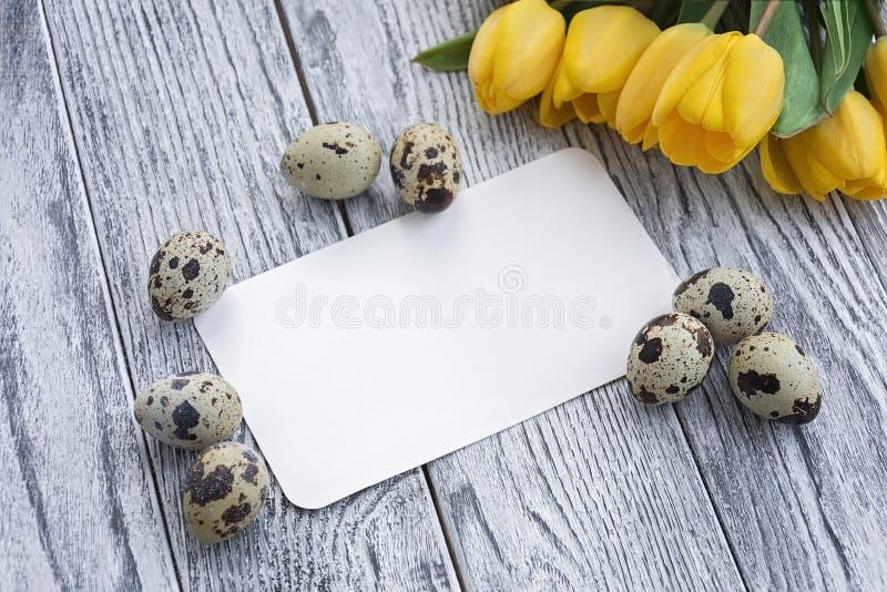 Przepiórek jajka, żółci tulipany i biel karta na drewnianym tle, obrazy stock