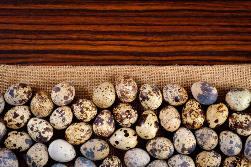 Przepiórek jajka od odgórnego widoku fotografia stock