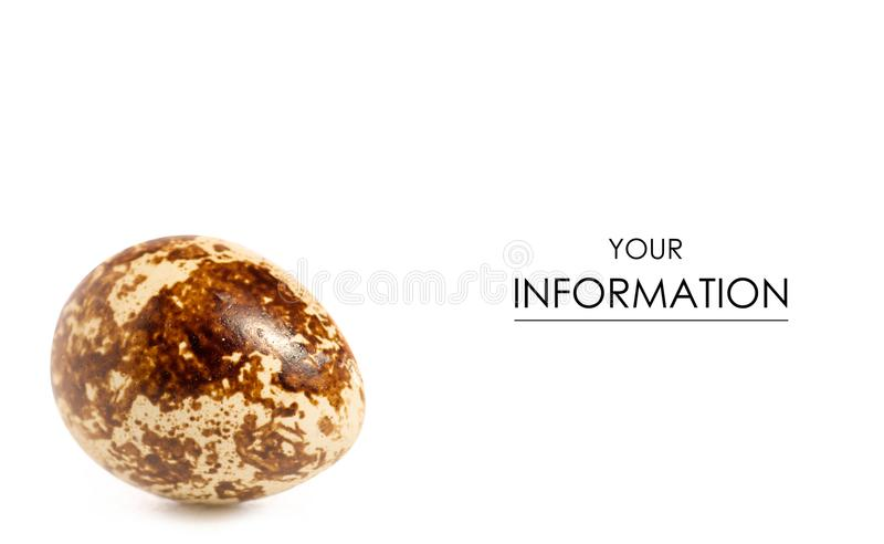 Przepiórki jajka wzór zdjęcie royalty free