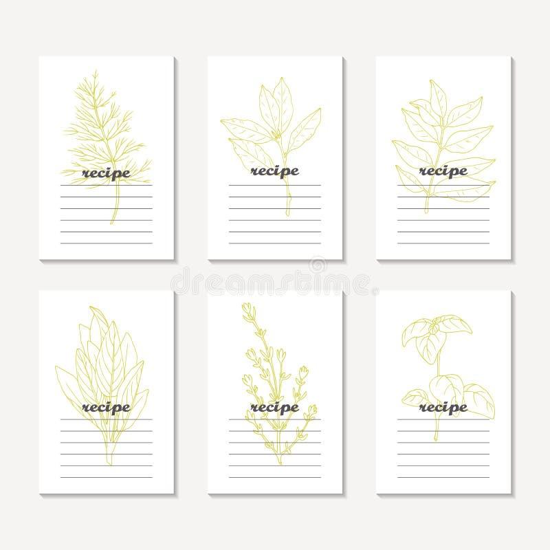 Przepis grępluje kolekcję z ręki rysującymi korzennymi ziele Kreślący koper, podpalany liść, curry, mędrzec, basil, macierzanka royalty ilustracja