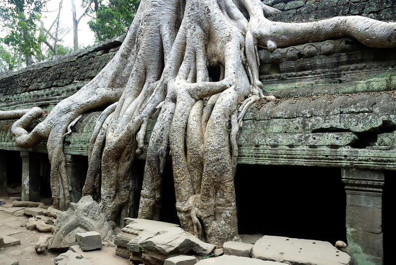przeprowadzać żniwa siem świątynię obraz royalty free