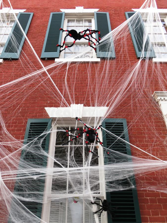 Przerażający pająki w Georgetown fotografia stock